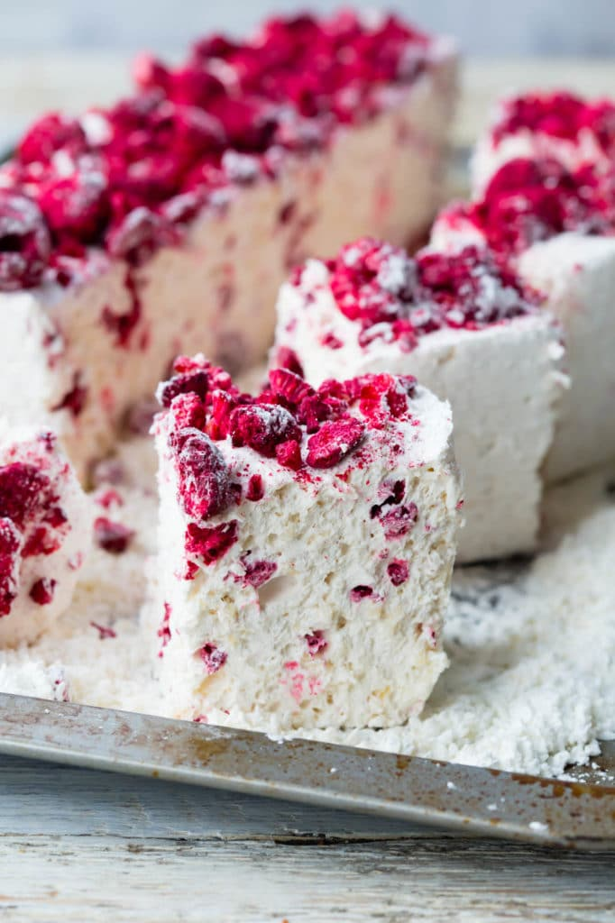 thermomix raspberry coconut marshmallows