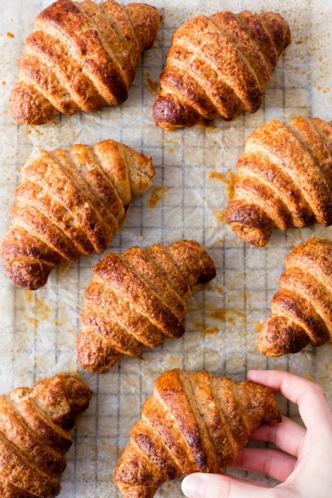 thermomix spelt croissants