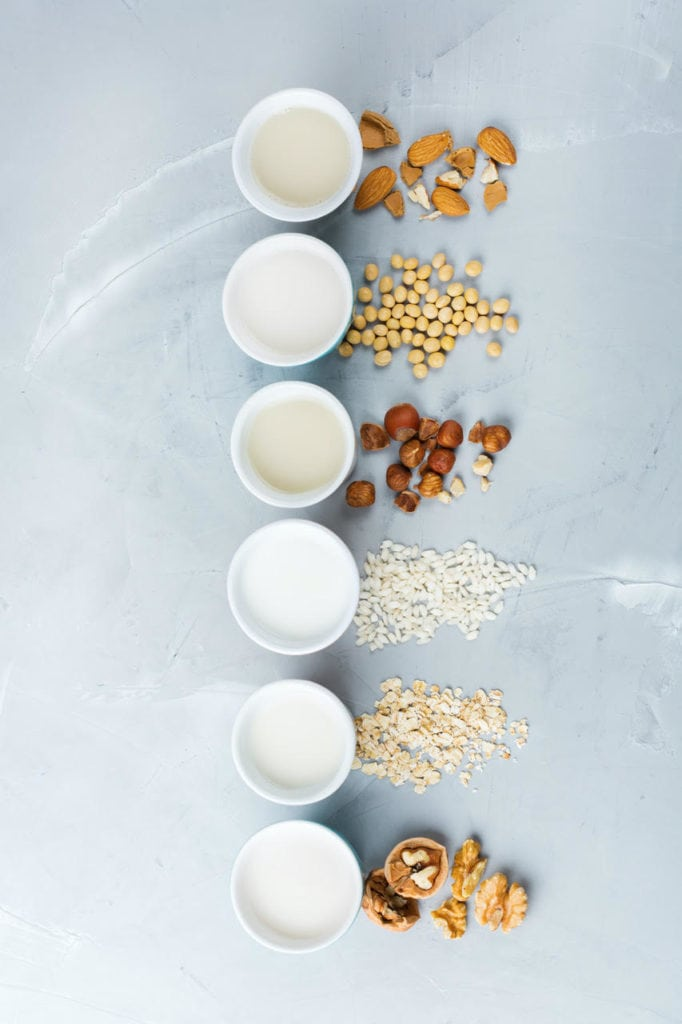 Guide to Dairy-Free Milk | Sophia's Kitchen